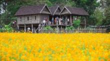 Foto: Jim Thompson Farm