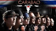 Carabao live in Holland
