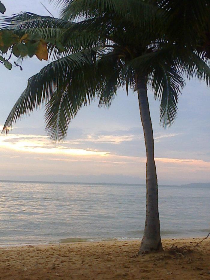 Neulich Am Strand Gute Nacht Thailand Pattaya