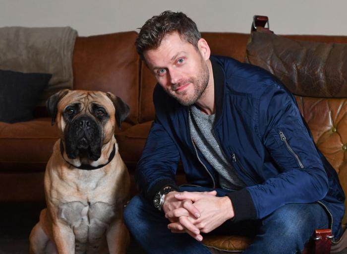 Der Bulle Und Das Biest Hund