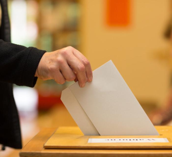 Direktwahl Des Bundespräsidenten